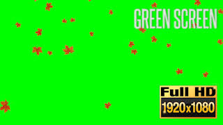 Slow Falling Autumn Leaves Green Screen Animation Callouts Creative Assets