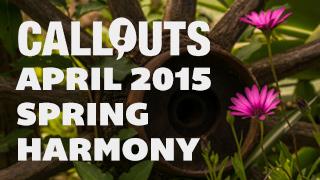 April 2015, Spring Harmony