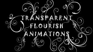 15 New Transparent Flourish Animations