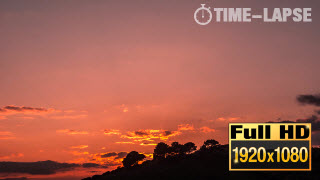 20060_callouts_SunsetTreeSilhoutteTimeLapse-thumb
