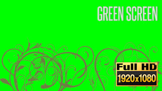 40050_callouots_FlourishGreen05-featured