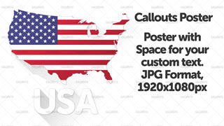 USA Flat Styled Map with Flag Poster Graphic Wide