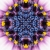 Blue Flower Starlish Kaleidoscope Loopable Video Background
