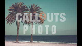 Palm Trees on Beach Vintage Styled Text Space