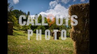 Hay Field with Haystacks