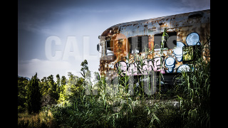 Deserted Train in the Middle of Nature 02