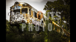 Deserted Train in the Middle of Nature 03