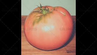 Huge Tomato on Table Vintage Style