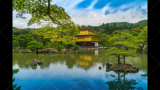 Wider shot of The Golden Pavilion, Kinkaku-ji, a Zen Buddhist temple, Kyoto, Japan
