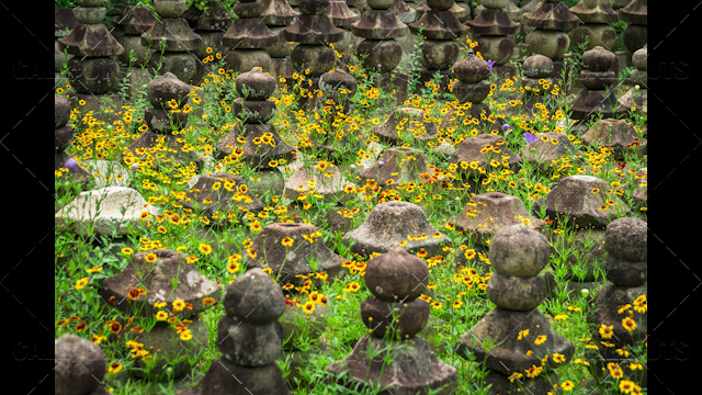 Japanese temple stone pagodas among flowers