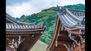 Buddhist temple roof Japan