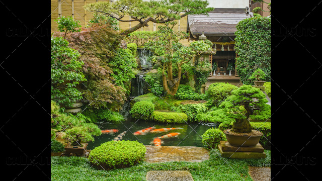 Japanese green garden with pond