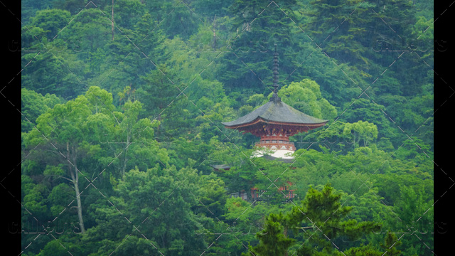 Japanese Buddhism temple in forest in rain