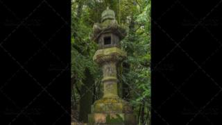 Japanese stone temple lantern, Tōrō, in forest. Kyoto, Japan.