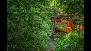 Japanese stone temple lantern, Tōrō, in forest. Kyoto, Japan.Fushimi Inari-taisha shrine in forest, Orange pillars. Kyoto, Japan.