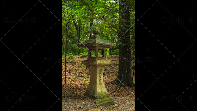 Fushimi Inari-taisha shrine, stone lantern, Tōrō, in forest. Kyoto, Japan.