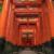 Fushimi Inari-taisha shrine in forest, Orange pillars. Kyoto, Japan.