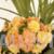 Bouquet of Orange Begonias Close-Up. Slow Pan Down