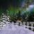 Winter Wonderland Aurora Zoom In on Deers Animation