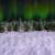 Winter Wonderland Aurora Pan Left Animation