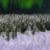 Winter Wonderland Aurora Pan Up with Snow Animation