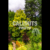 Famous lush Canadian garden, Butchart Gardens